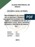 Perfil Manifestaciones Culturales MPN. 2013.pdf