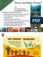 Populasi Penyu di Indonesia.ppt