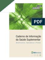 2014 Mes06 Caderno Informacao