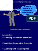 Auditing in Computer Environment Presentation 1224128964994975 8