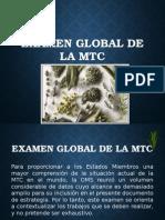 examen global de la mtc