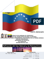 El Gas Natural y La PetroquÃ-mica - Equipo 1