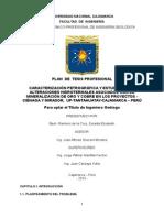Plan de Tesis-2015 Zoraida r