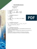SOLFS21.pdf