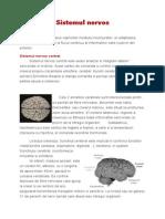 207708155-Sistemul-nervos