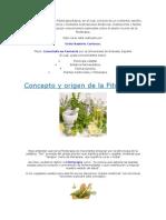 Curso de Fitoterapia Básica