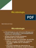 Microbiologia Primer Presentacion Febrero