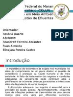 estaodetratamentodeesgoto-130201094130-phpapp01