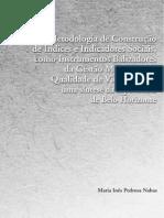 02pronex 16 Metodologia Construcao Indices