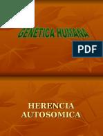 Har-Genetica