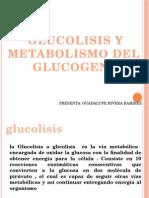 Metabolismo Del Glucogeno (presentación)