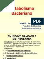 Metabolismo microbiana