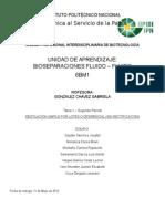 Destilación Por Lote FLU FLU (1) (1)
