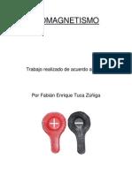 Fabian Tuca Biomagnetismo Curso