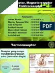 Termoreseptor, Magnetoreseptor Dan Elektroreseptor