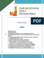 ResumenPlan2011.doc