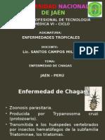 Enfermedad de Chagas 15-11-2014