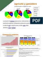 Sector Agrícola y Ganadero ARGENTINA