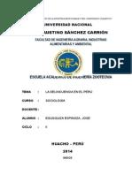 LA DELINCUENCIA EN EL PERU.docx
