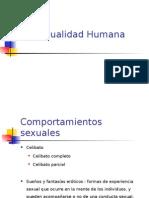4 comportamientos sexuales