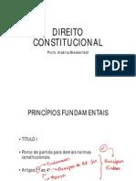 Arseniabreckenfeld Direitoconstitucional Completo 002