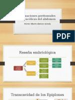 Formaciones Peritoneales Supracólicas Del Abdomen