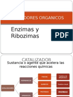 7 enzimas.pptx