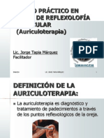 1 Marco Teorico Curso Auri en Linea 2014