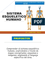 CLASES - SISTEMA ESQUELETICO.ppt