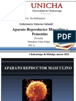 Aparato Reproductor Masculino y Femenino