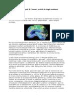 Neuroimagerie de l