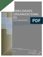 Habilidades Organizacionales.doc