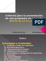 PERFIL- PROYECTO