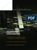 Tema 4 Fenomenos Cadavericos 1216496143787508 9