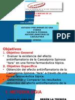 """ESTUDIO PRELIMINAR DE UNA FORMA GALÉNICA POMADA ANTIINFLAMATORIA DE CAESALPINIA SPINOSA """"TARA"""""""