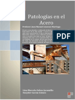 Patologia en El Acero
