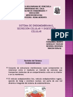 SISTEMA DE ENDOMEMBRANA.ppt