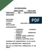Informe de Biología 2