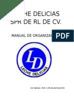 MANUAL DE ORG.docx