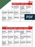 Red Caminantes Junio 2015.pdf