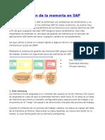Administración de La Memoria en SAP