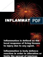 Exudativeinflammation