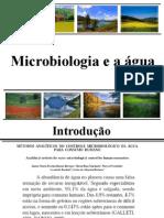 Aula 10 - Microbiologia Da Agua 2011.1