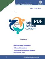 EnlaceLaboral DisciplinaTecnologia Junio 2015 062015