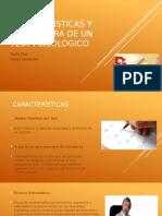 Estructuras y Características de Un Test