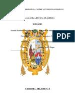 CATIONES  DEL GRUPO 3.docx