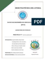 INFORME_8_LABPETROLEOS.pdf