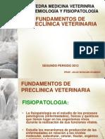 Fundamentos de Preclinica Veterinaria