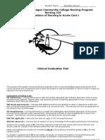 rachelle nursing 112 evaluation tool (3)