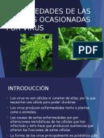 Virus Fitopatógenos